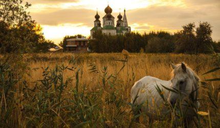 Экскурсии по Донскому краю